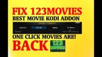 FIX 123MOVIES IN KODI – THE BEST MOVIE KODI ADDON QUICK FIX! IT'S BACK! WORKING WOW!