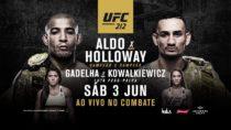 UFC 212: Aldo x Holloway